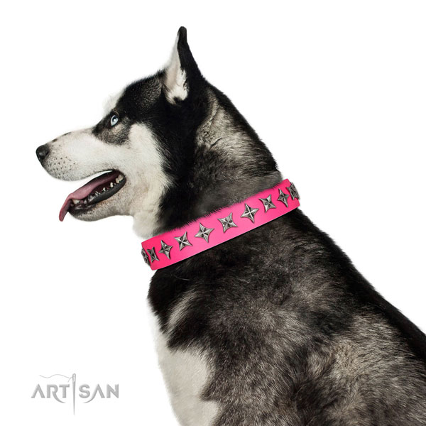 Durable full grain natural leather dog collar with inimitable decorations