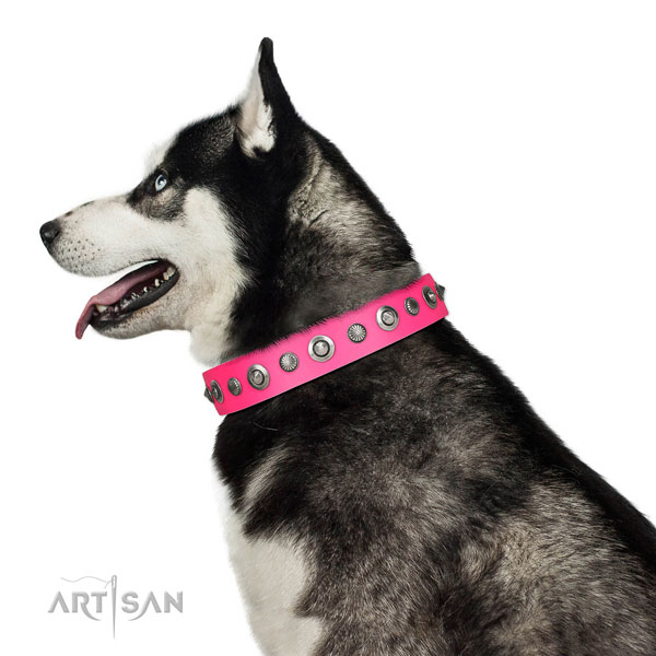 Full grain genuine leather collar with corrosion proof buckle for your lovely dog
