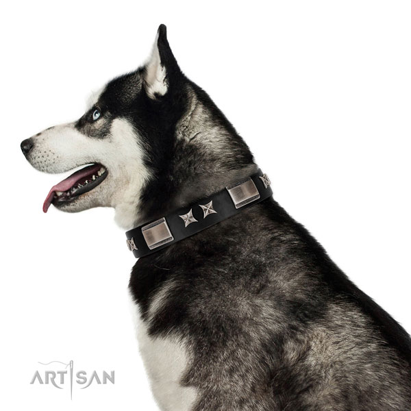 Everyday use reliable full grain natural leather dog collar with decorations