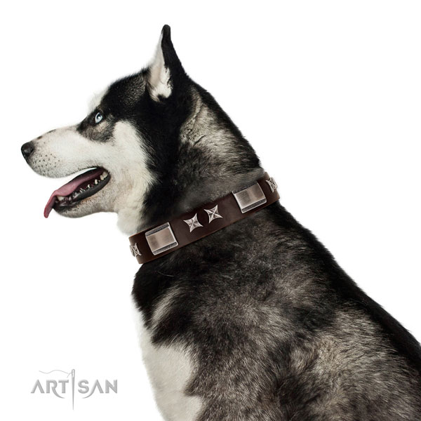 Exquisite collar of leather for your attractive dog