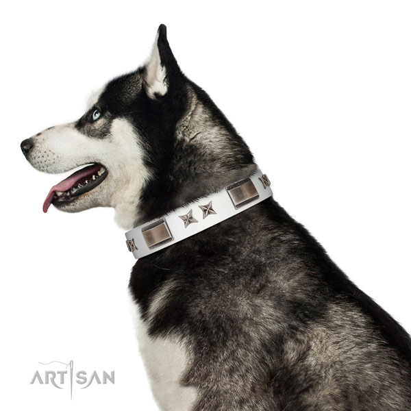 Easy wearing collar of full grain genuine leather for your stylish dog