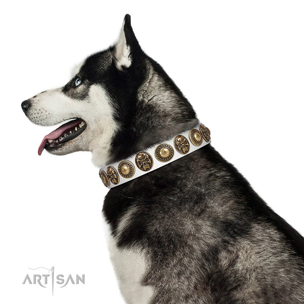 Embellished full grain natural leather collar for your beautiful four-legged friend