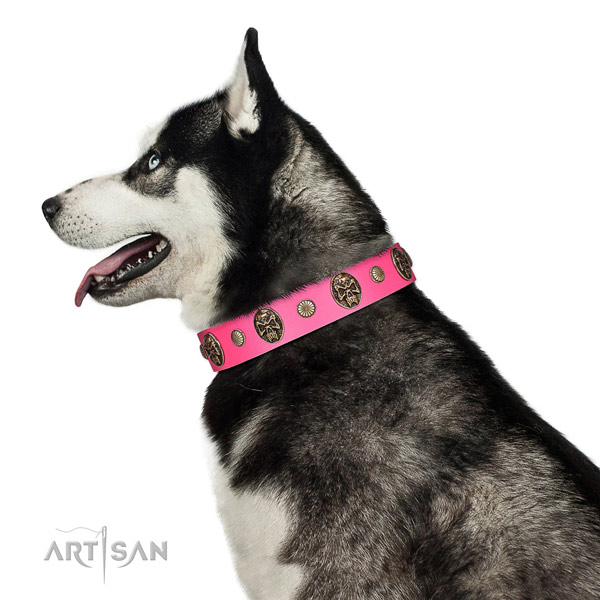 Corrosion resistant hardware on leather dog collar for everyday walking