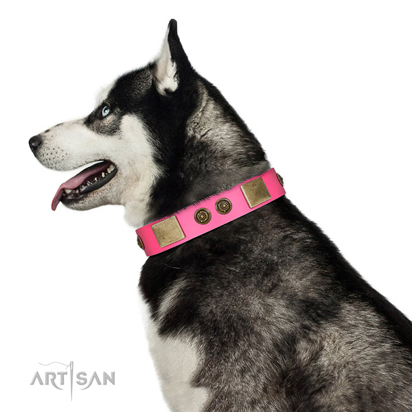 Inimitable dog collar created for your handsome four-legged friend