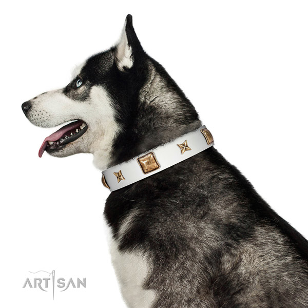 Inimitable natural leather dog collar with adornments