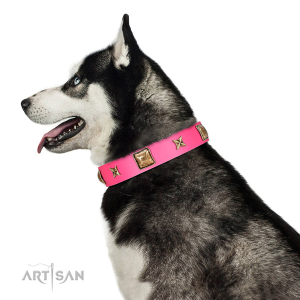 Full grain genuine leather dog collar of soft material with fashionable decorations