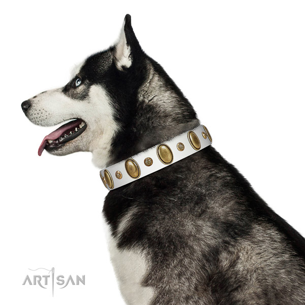 Comfy wearing best quality leather dog collar with decorations
