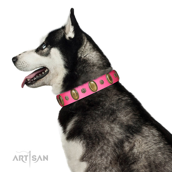 Flexible full grain natural leather dog collar with corrosion proof hardware
