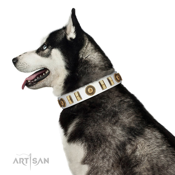 Adjustable leather dog collar with rust-proof hardware