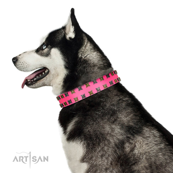 Strong genuine leather dog collar with decorations for your doggie