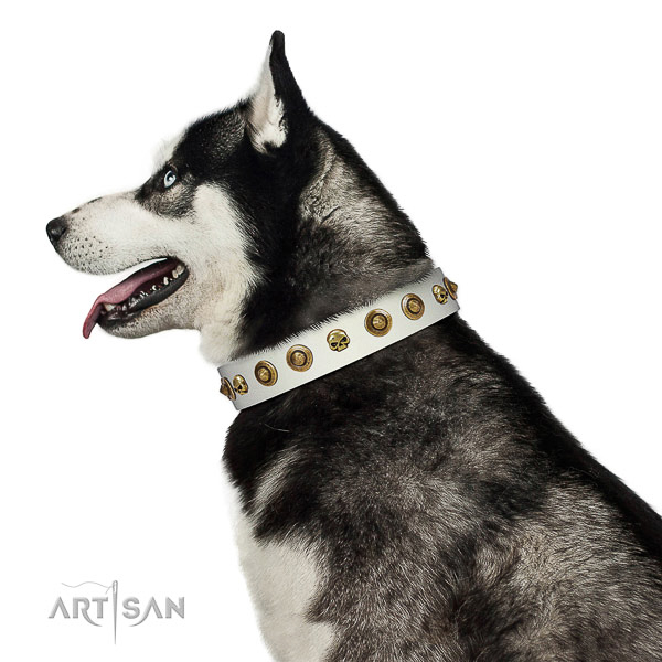 Reliable full grain natural leather dog collar with embellishments for your four-legged friend