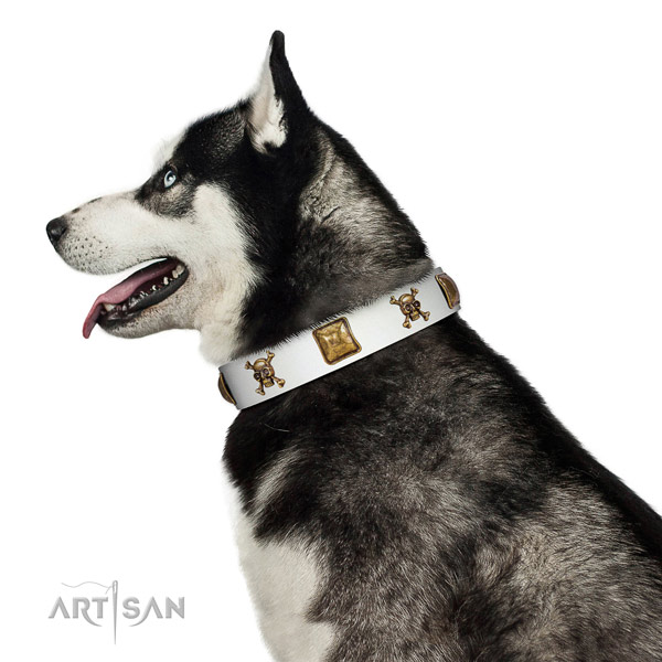 Unusual full grain natural leather dog collar with reliable adornments