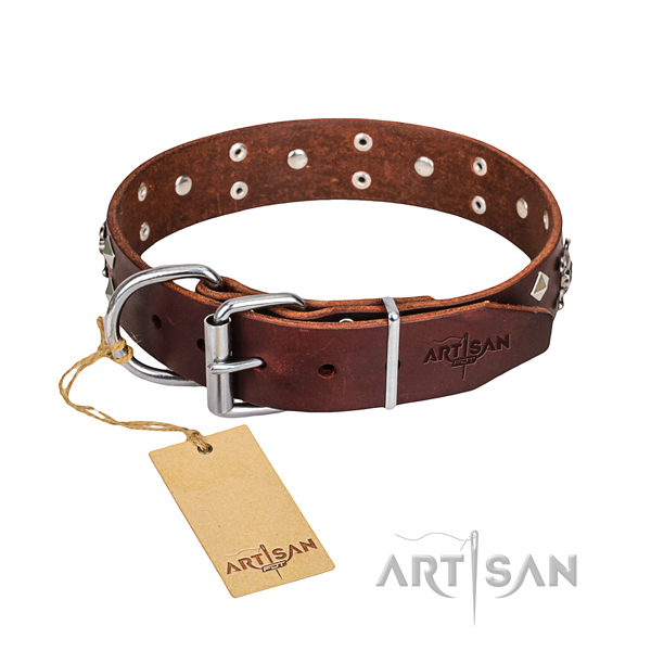Casual style leather dog collar with luxurious embellishments