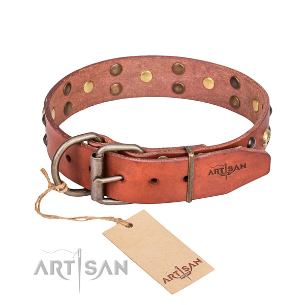 Leather dog collar with thoroughly polished edges for comfy everyday wearing
