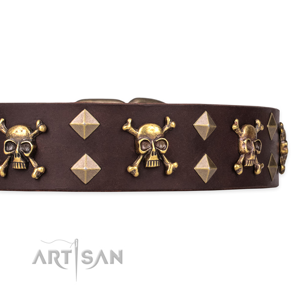 Natural leather dog collar for stylish walks