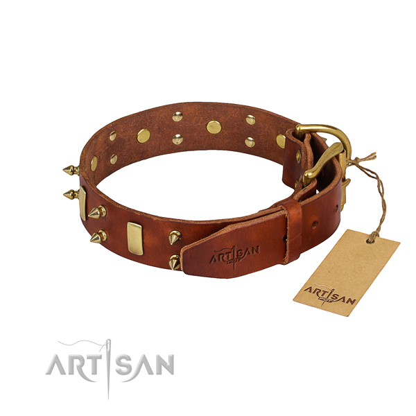 Genuine leather dog collar with smoothed leather surface