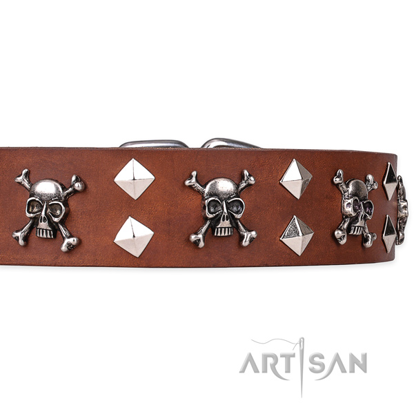 Indestructible leather dog collar with non-corrosive details