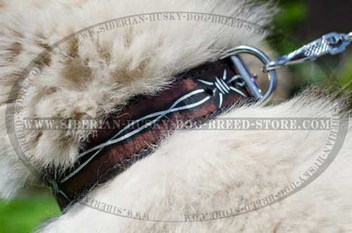 Leather dog collar for Husky barbed wire painting
