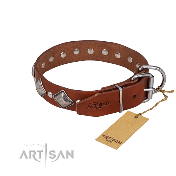 Natural leather dog collar with polished surface