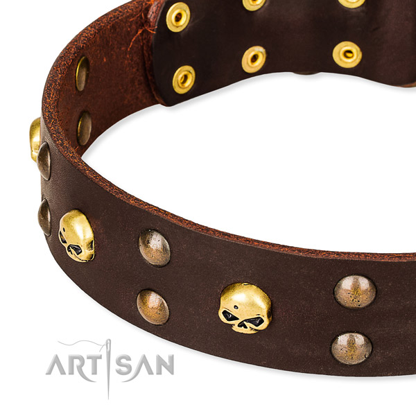 Full grain leather dog collar for training