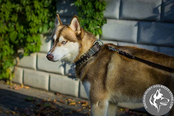 Caterpillar design Siberian Husky pure leather collar