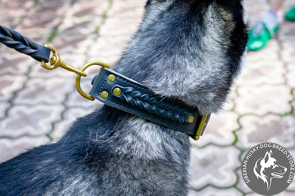 Siberian Husky collar with fixed braided decor