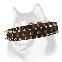 Siberian Husky breed leather dog collar with adornment