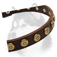 Siberian Husky breed leather dog collar with dotted circles