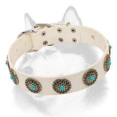 Fashion leather Siberian Husky collar