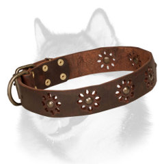 Swell Siberian Husky leather collar