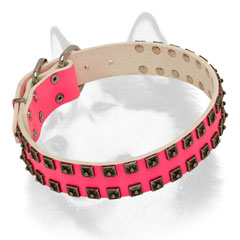 Female leather Siberian Husky collar