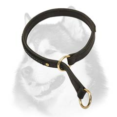 Siberian Husky decorated choke collar