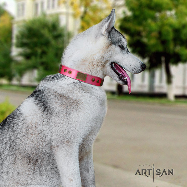 Siberian Husky significant adorned leather dog collar