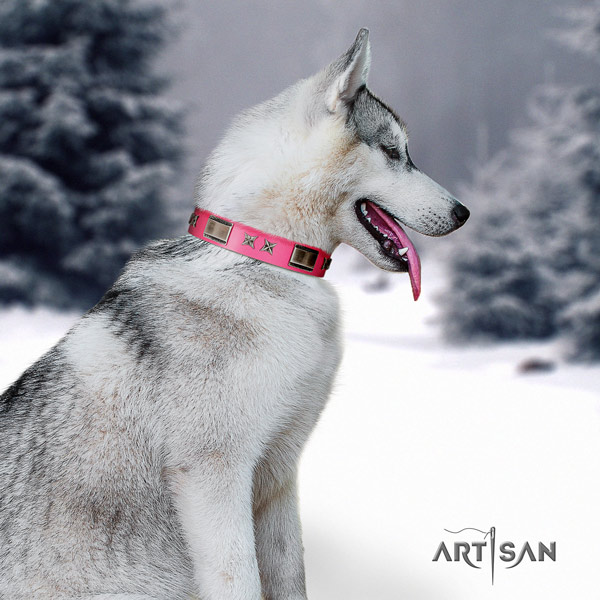 Siberian Husky unusual adorned full grain natural leather dog collar for comfortable wearing