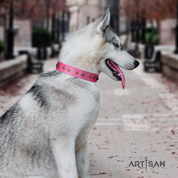 Siberian Husky stunning embellished natural genuine leather dog collar