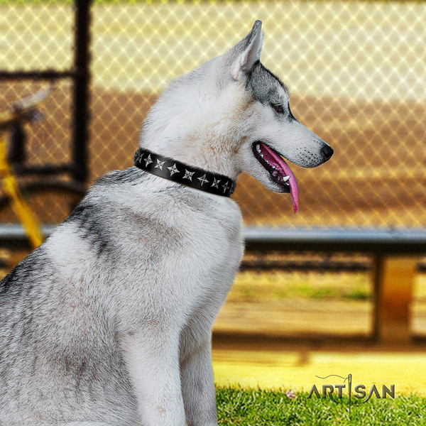 Siberian Husky remarkable decorated full grain natural leather dog collar for daily use