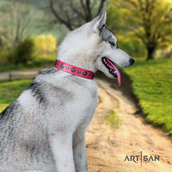 Siberian Husky impressive decorated full grain natural leather dog collar for everyday walking