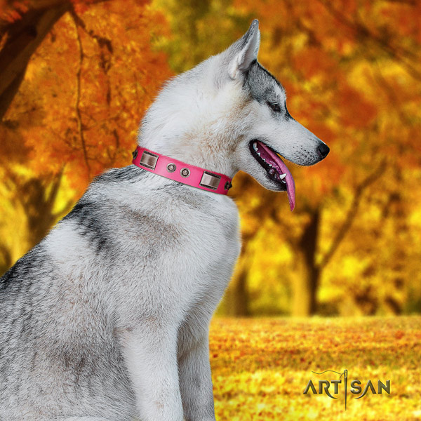 Siberian Husky designer decorated full grain genuine leather dog collar for everyday walking