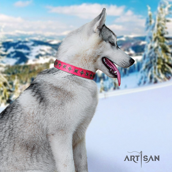 Siberian Husky extraordinary decorated natural leather dog collar for comfy wearing
