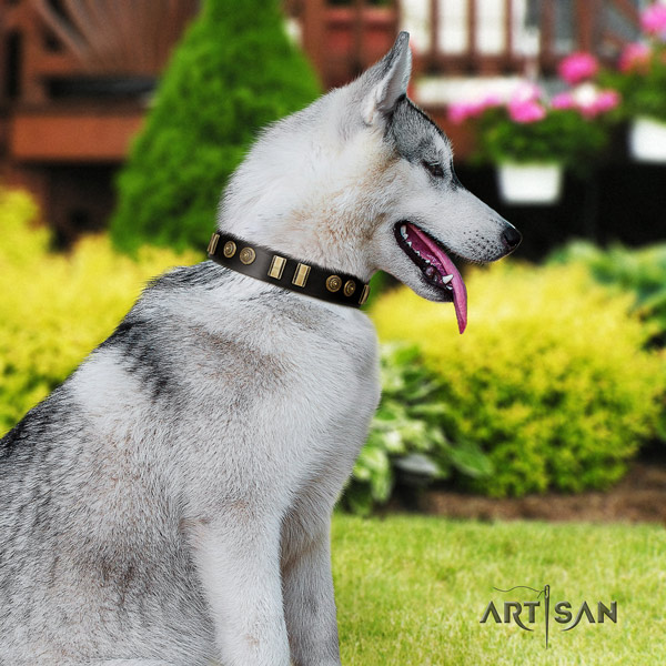 Siberian Husky unusual decorated leather dog collar for comfortable wearing