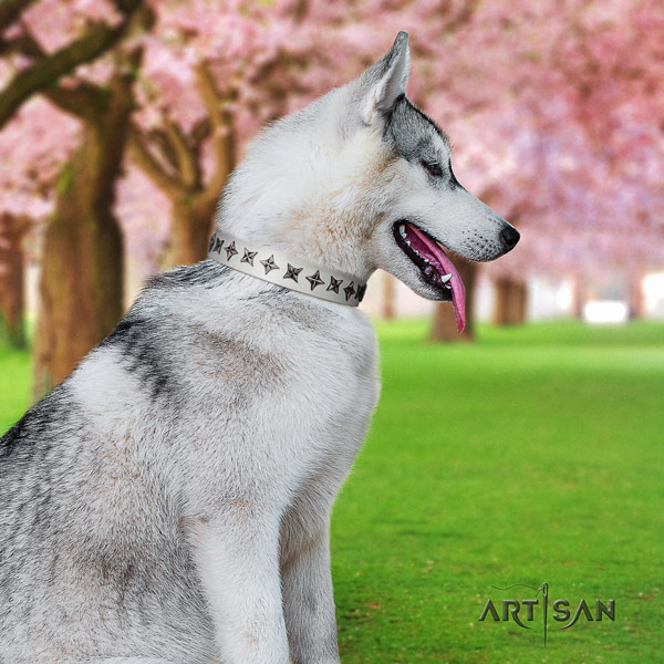Siberian Husky remarkable adorned natural leather dog collar for everyday use