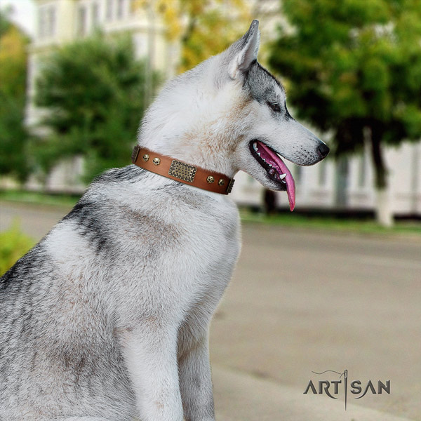 Siberian Husky stunning decorated natural genuine leather dog collar