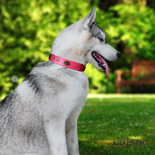 Siberian Husky exquisite decorated genuine leather dog collar for walking