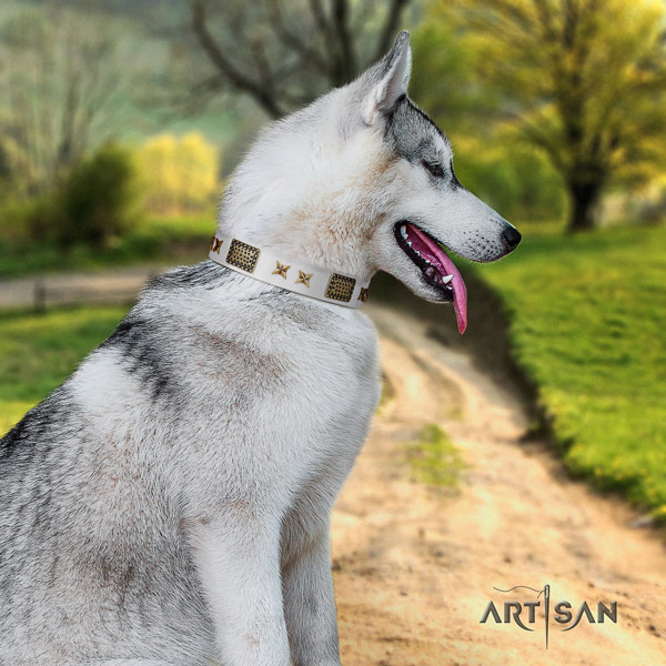 Siberian Husky impressive decorated full grain genuine leather dog collar