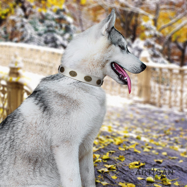 Siberian Husky significant decorated full grain leather dog collar