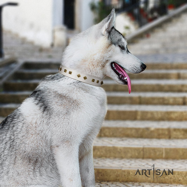 Siberian Husky trendy studded leather dog collar