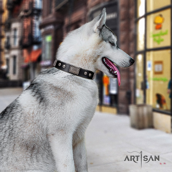 Siberian Husky unusual adorned natural genuine leather dog collar