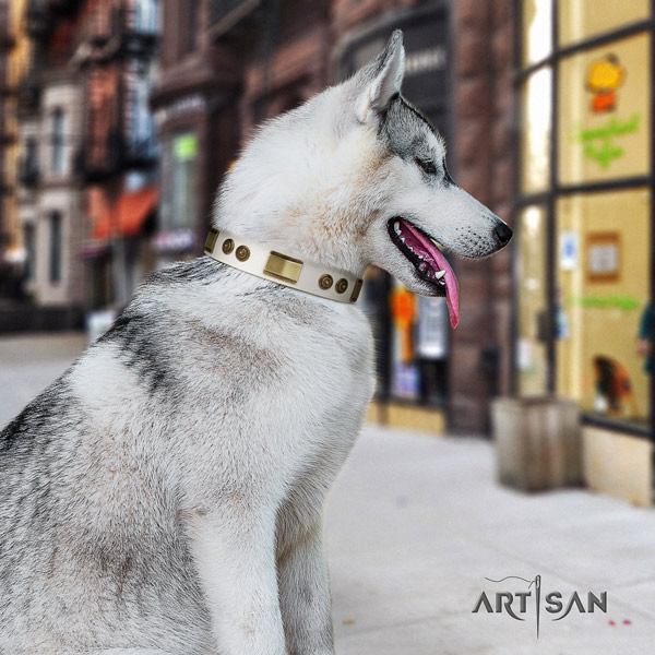 Siberian Husky extraordinary decorated leather dog collar