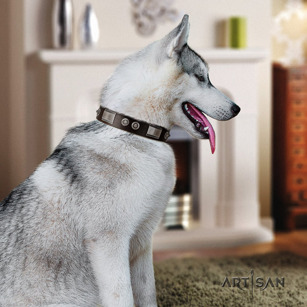 Siberian Husky fashionable embellished full grain genuine leather dog collar for walking