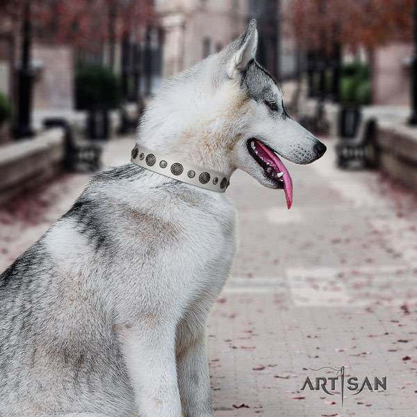 Siberian Husky inimitable adorned genuine leather dog collar for walking